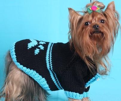 Вязаный свитер для французского бульдога своими руками выкройки