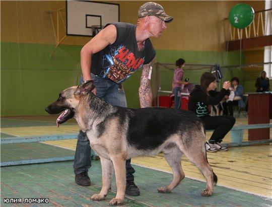 http://fauna42.ucoz.ru/_fr/4/9449331.jpg